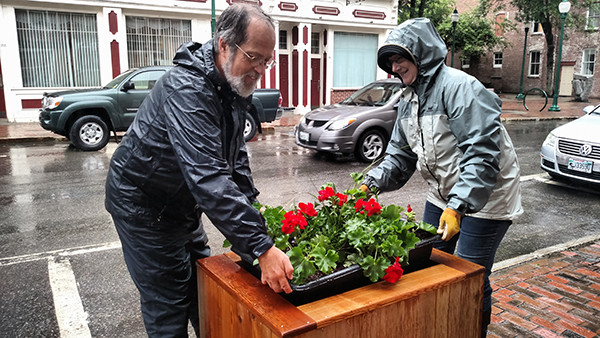 Person helping move flower